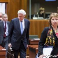 Carnet (10.02.2014). EUFOR RCA (décision, étapes). EUFOR Althea (intervention, relève). Ukraine (coopération). Syrie (Dégel des fonds, aide humanitaire). SEAE Myanmar. Mali (Suède). Négociation E3+3)
