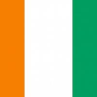 Une dérogation adoptée à l'embargo sur les armes pour la Côte d'Ivoire