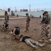 L'UE définit sa stratégie régionale pour l'Irak, la Syrie et contre Daesh