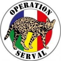 N°37. L'opération Serval devenue opération Barkhane au Sahel