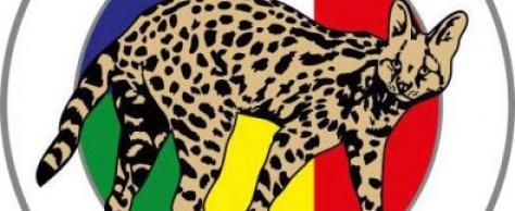 N°37. L'opération Serval montée par la France pour stabiliser le Mali