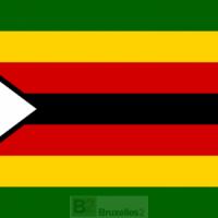 Les Européens pourraient prolonger les sanctions sur le Zimbabwe