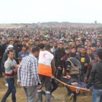 Gaza. L'UE demande une enquête indépendante. Israël refuse. Les pays européens consternés