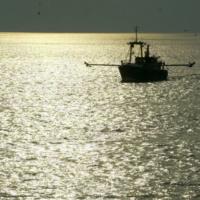 Vers un nouvel accord de pêche avec le Maroc… y compris dans les eaux sahraouies