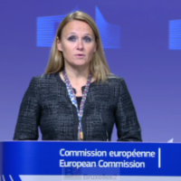 L'UE lance un appel très clair au Kosovo et à la Serbie : arrêtez les provocations !