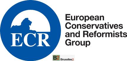 Elections 2019. Les conservateurs en chute au Parlement européen ?