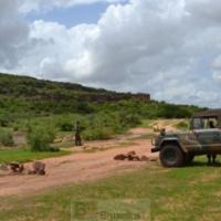 Sahel. Une inquiétude européenne accrue. Faut-il changer le logiciel d'EUTM Mali ?