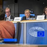 Un brouillard de doutes sur Sylvie Goulard et un portfolio trop épais disent la majorité des groupes politiques