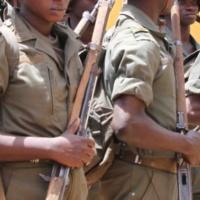Le «conseil» à l'armée malienne, décisif ! (Un an d'EUTM Mali)