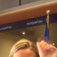 Mogherini au Parlement européen : Ukraine, Russie, Irak, Moyen-Orient, Elargissement