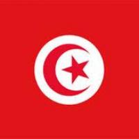 Tunisie. Dispositif de sanctions prolongé pour le clan Ben Ali et Trabelsi. Quatre noms retirés de la liste noire