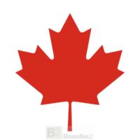 L'accord PNR avec le Canada contraire aux droits fondamentaux (Cour). Neuf irrégularités flagrantes