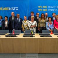 Plusieurs pays s'engagent à acheter ensemble des munitions, terrestres ou navales