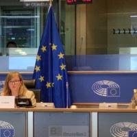 Sans moyens pour la PSDC, sans hard power, la crédibilité de l'Europe est en danger (Gen. Graziano)