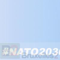OTAN 2030 : 138 recommandations pour bâtir l'Alliance atlantique de demain. Plus politique et plus réactive